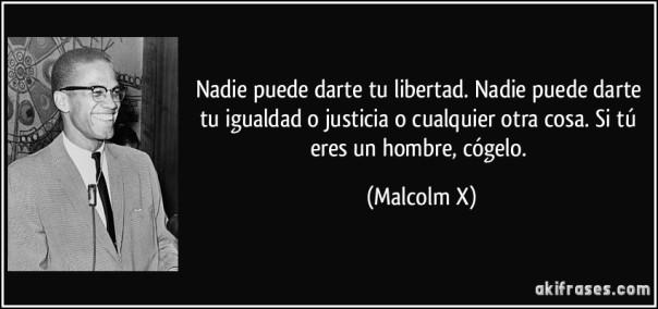 frase-nadie-puede-darte-tu-libertad-nadie-puede-darte-tu-igualdad-o-justicia-o-cualquier-otra-cosa-si-malcolm-x-120614