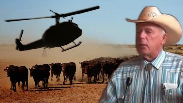 ranch bundy