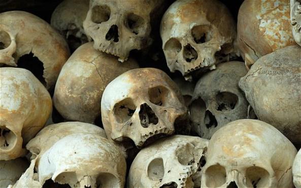 Skulls_2728720b