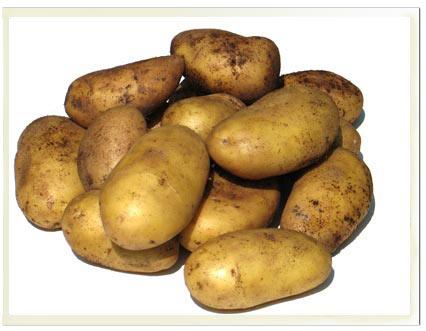 recettes-bio-pommes-de-terre