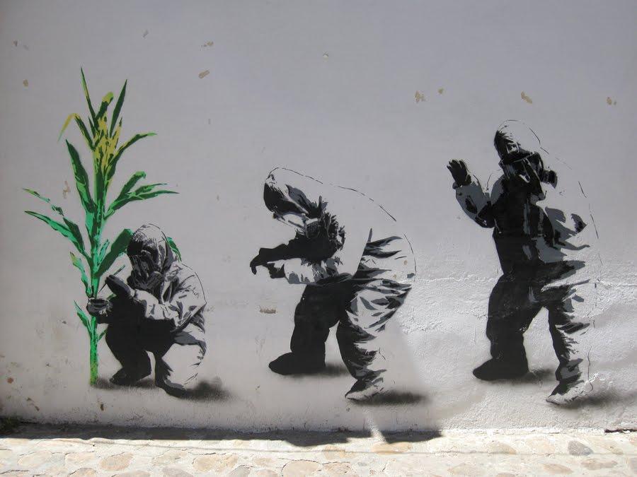 oaxaca-gm-corn-mural12