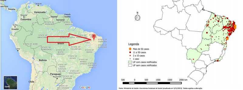 zika-épicentre-moustiques-ogm